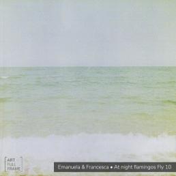 Art Full Frame - Emanuela Francesca - AtNightFlamingosFly10