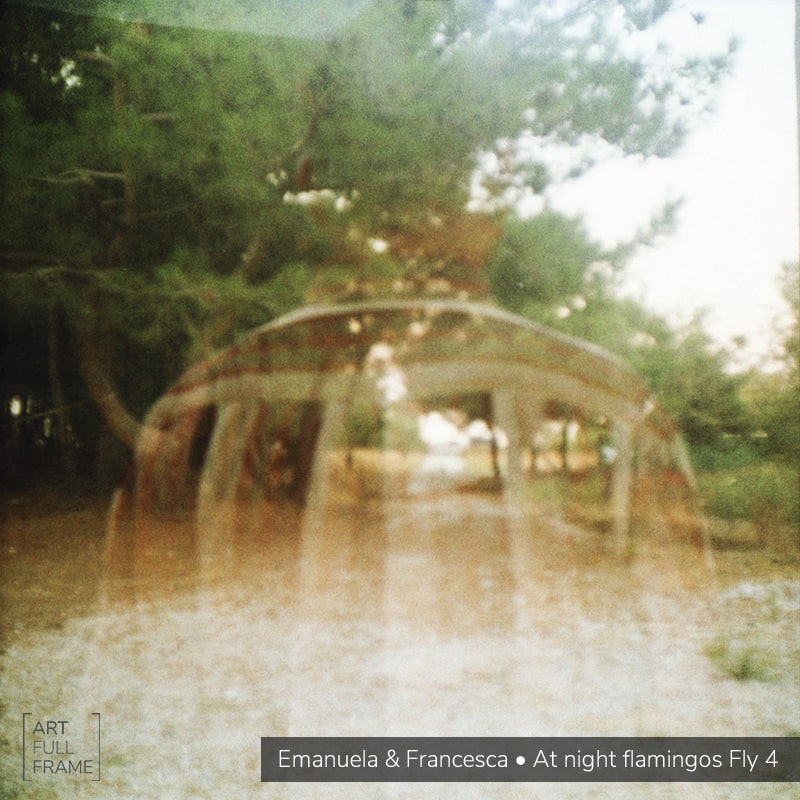 Art Full Frame - Emanuela Francesca - AtNightFlamingosFly4
