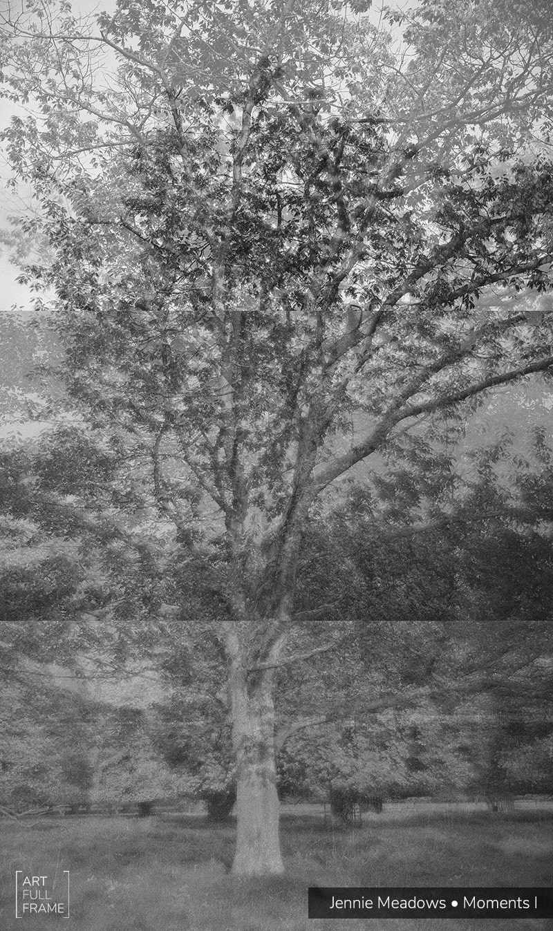 ArtFullFrame-JennieMeadows-MomentsI