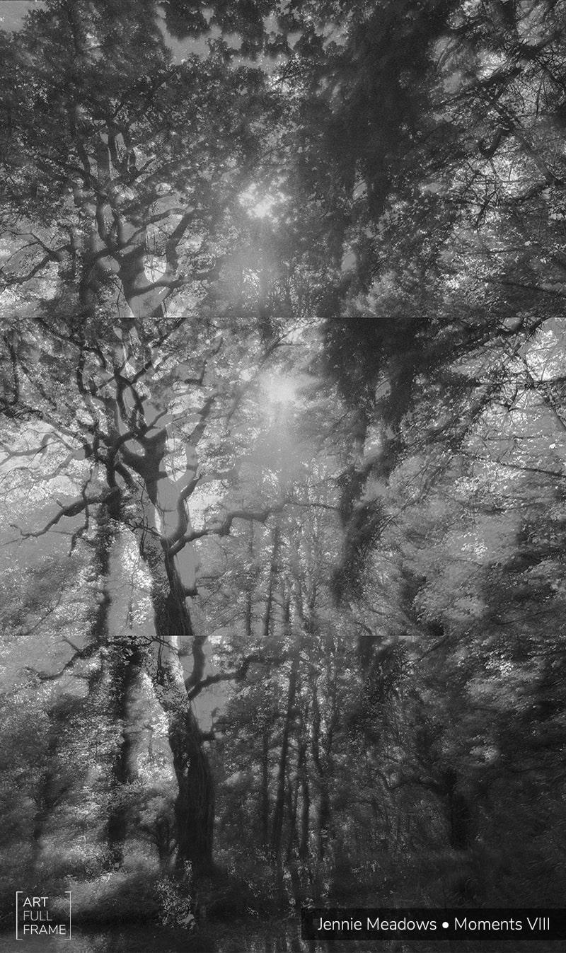 ArtFullFrame-JennieMeadows-MomentsIV