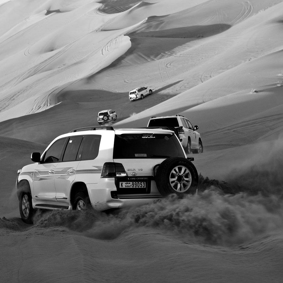 Black and White 2020 Contest- Dubai Safari - Antonio Buscio - artfullframe.com