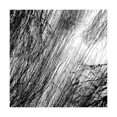Ansje Visser - secrets 1 - ArtFullFrame artfullframe.com